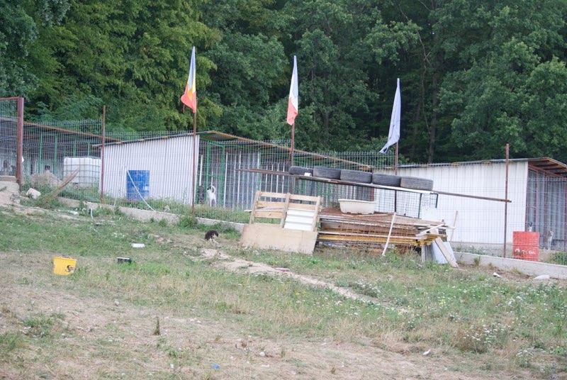 Voyage en Roumanie du 16 au 24 août Dsc_0813