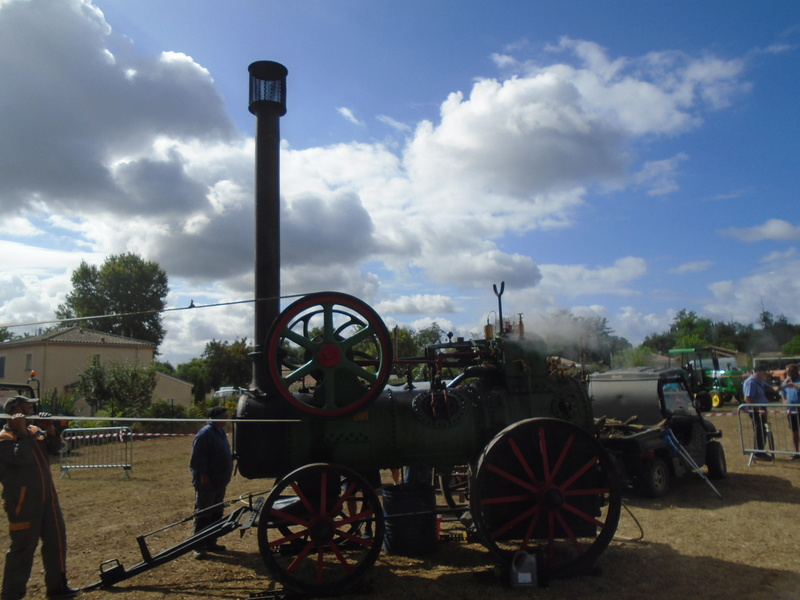 Fête de Roaillan (33) exposition tracteurs et voitures anciennes (Aout 2016) Dsc04523
