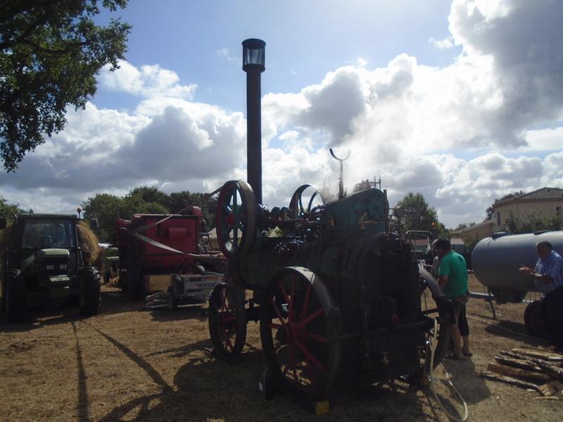 Fête de Roaillan (33) exposition tracteurs et voitures anciennes (Aout 2016) Dsc04526