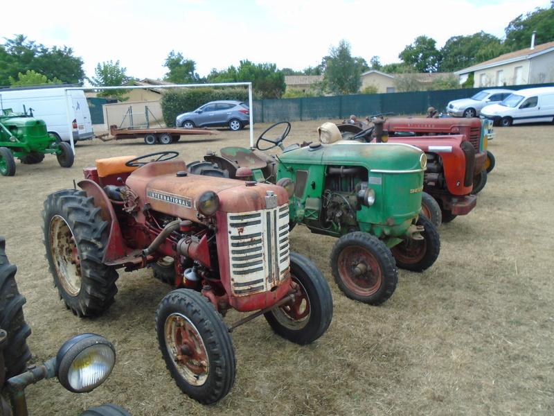 Fête de Roaillan (33) exposition tracteurs et voitures anciennes (Aout 2016) Dsc04616