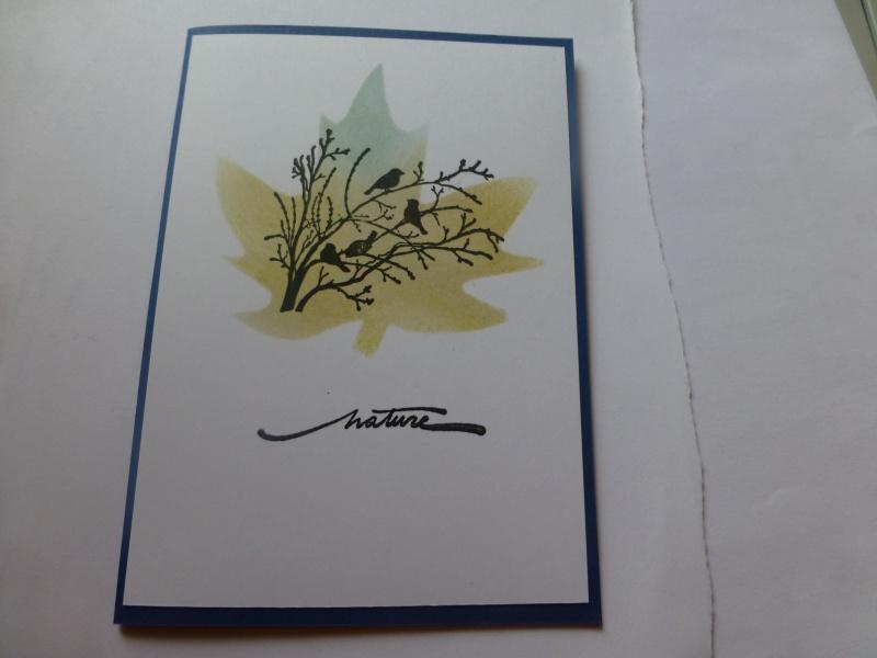 cardlift de juin - Page 3 P1020013