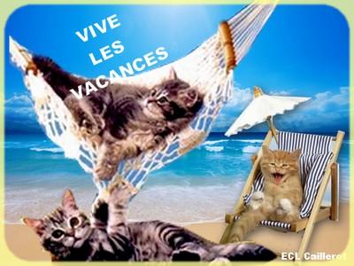 L'école du chat libre Caillerot Vacanc10