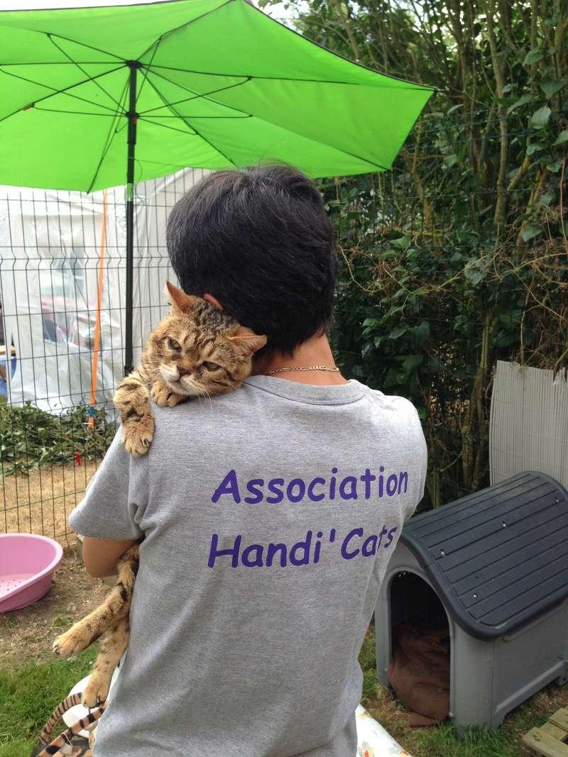 Week-end Handi'cats 00711
