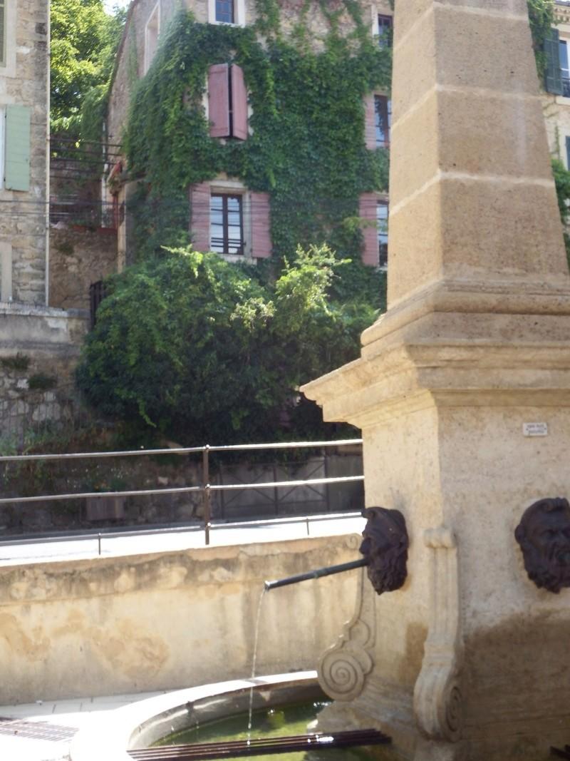 Aux portes du Luberon - Page 8 Dscf2525