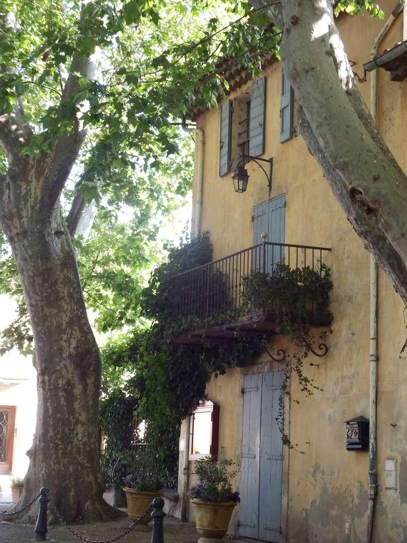 Aux portes du Luberon - Page 8 Dscf2615