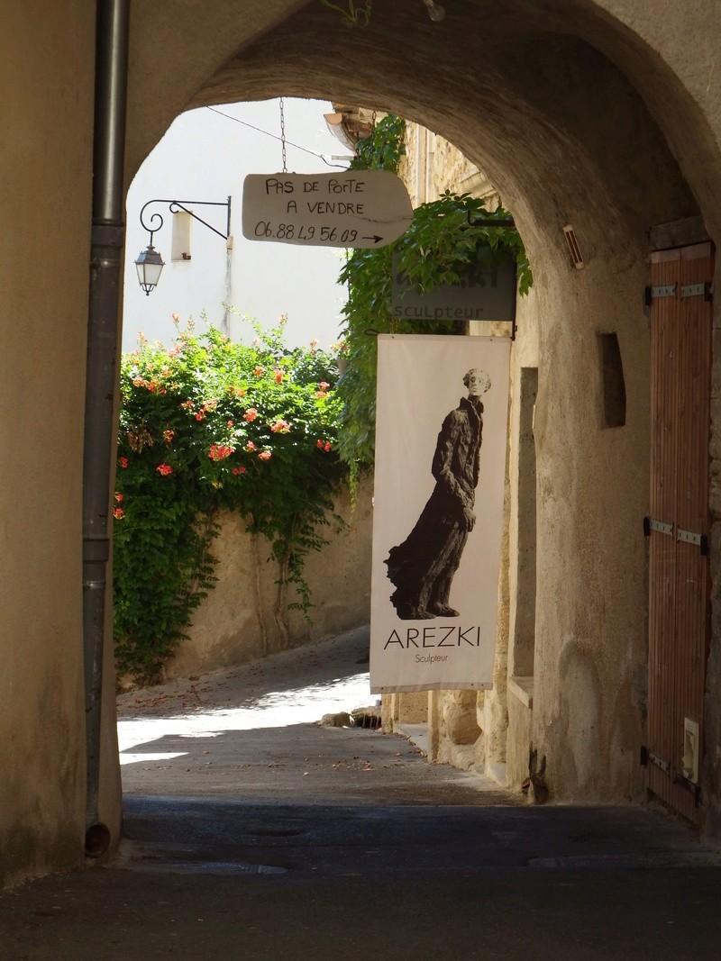 Aux portes du Luberon - Page 9 Dscf2639