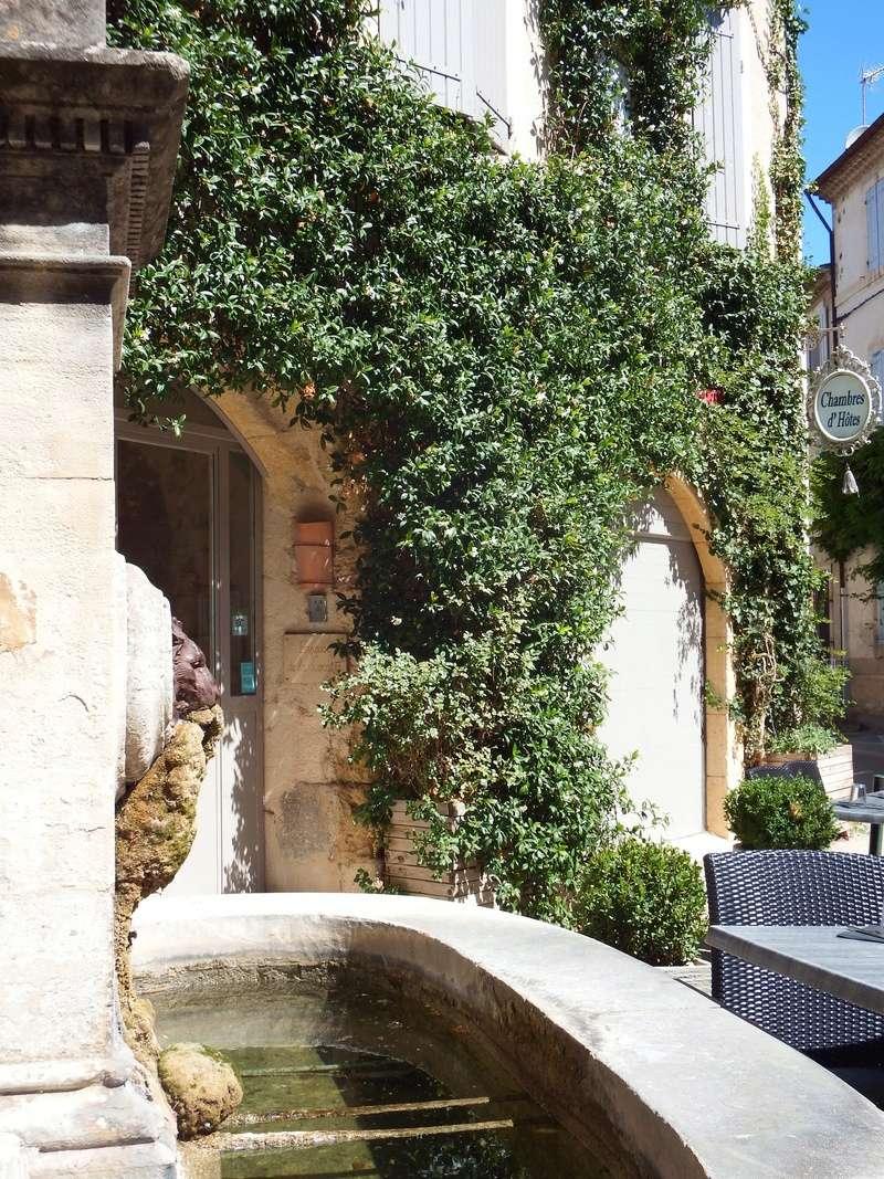 Aux portes du Luberon - Page 9 Dscf2712