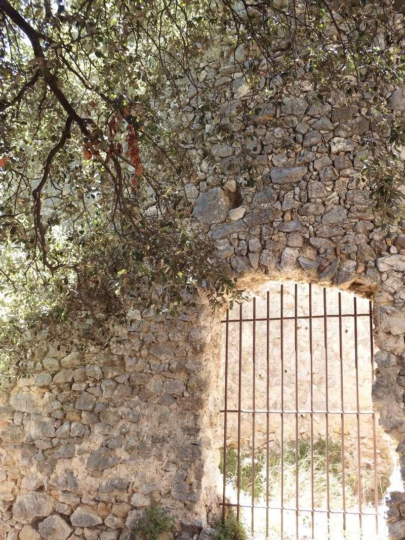 Aux portes du Luberon - Page 10 Dscf2915