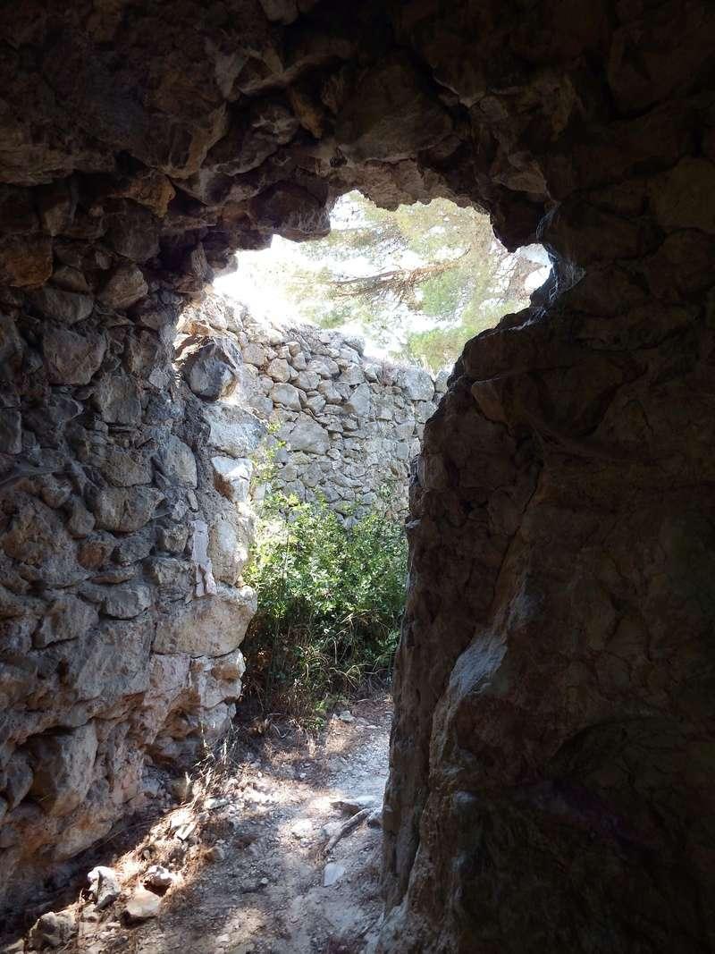 Aux portes du Luberon - Page 10 Dscf2917
