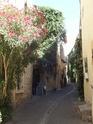 Aux portes du Luberon - Page 9 Dscf2642