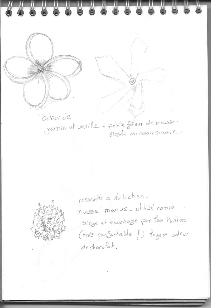 Les petits papiers de Nath' - Privé Fleurs11