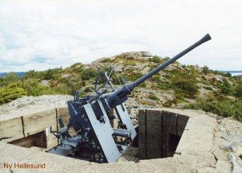 [zvezda] Bofors 40mm Mk.1/2 au 1/72 349x2510