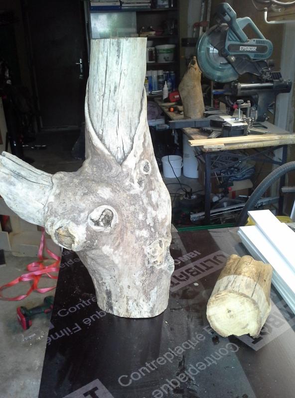 Lampe bois flotté vernie 20160610