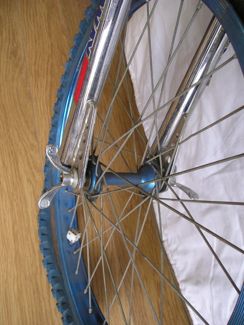 BMX Thunder TCX 2000 (stické et upgradé Skyway) 1983 P1010214