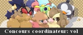 Pokémon d'Antan Annonc12