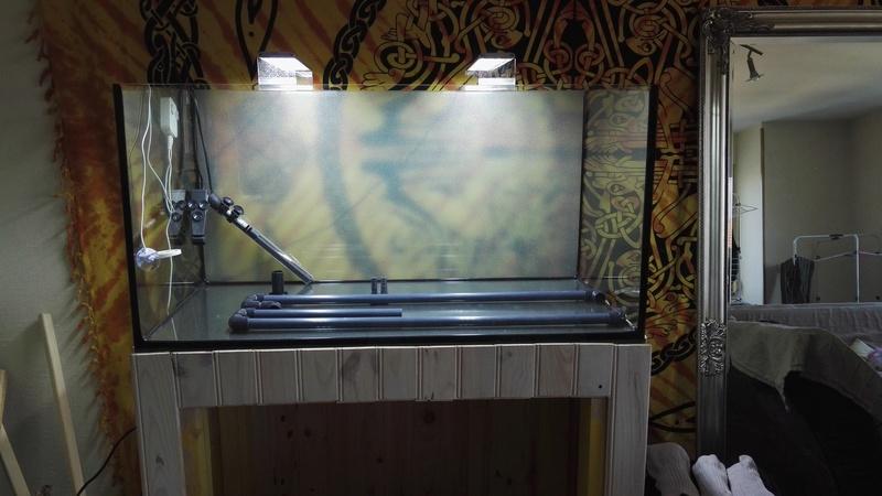 Aquascaping 90x45x45 Img_2011