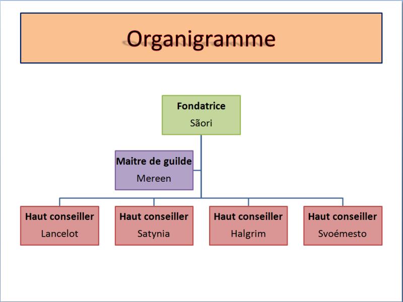 Organigramme  Organi11