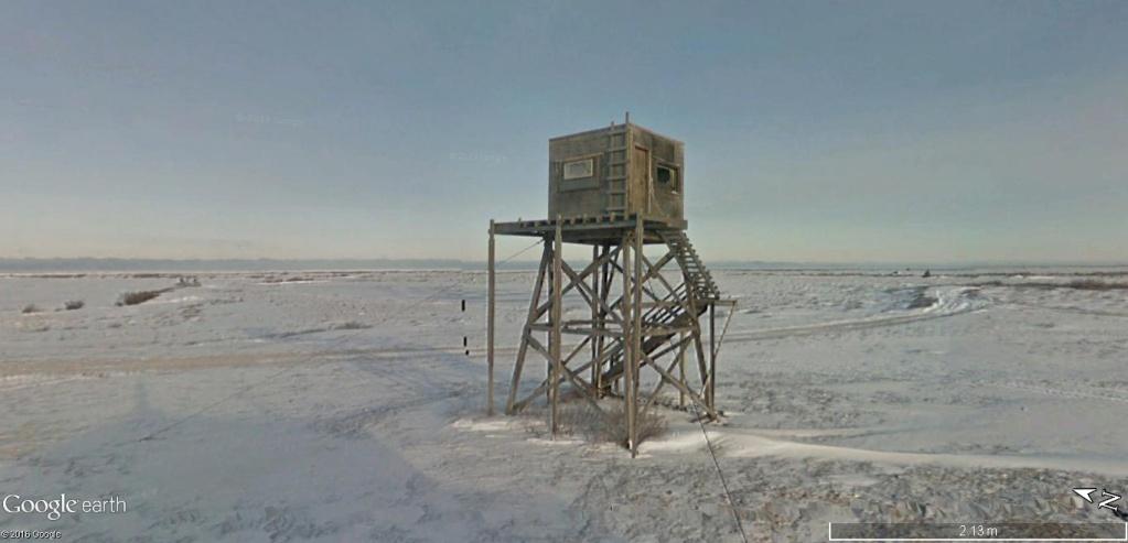 « Capitale mondiale de l'ours polaire » Churchill (Manitoba) - Canada Observ10