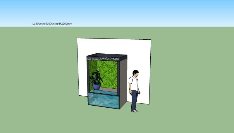 Contruction terra pour Physignathus.(conseil et validation du projet). - Page 2 Palu_d10
