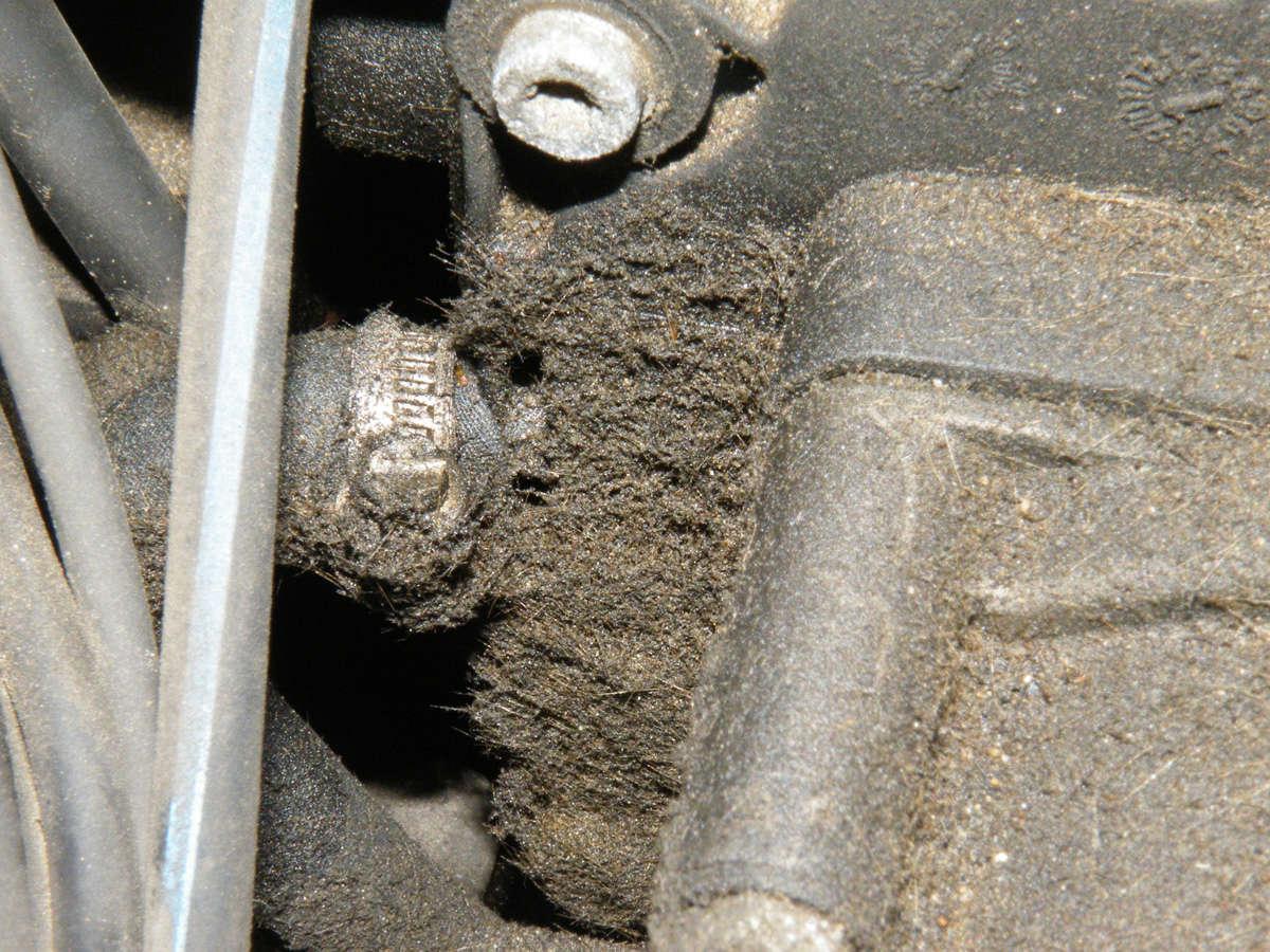 735IA E38 de 1999 Mot08p10