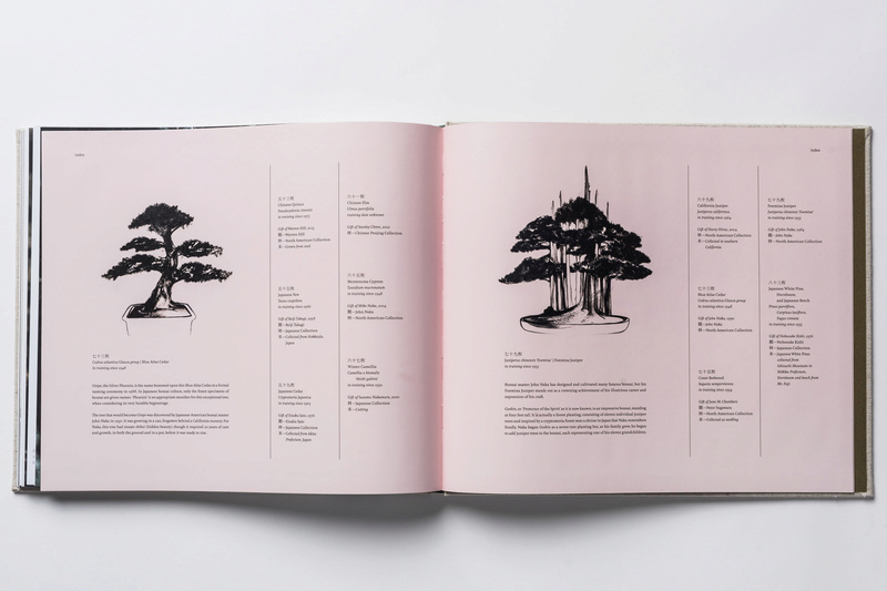 In Training, a new book of bonsai photos, out now (and discounted on Amazon) Intrai15