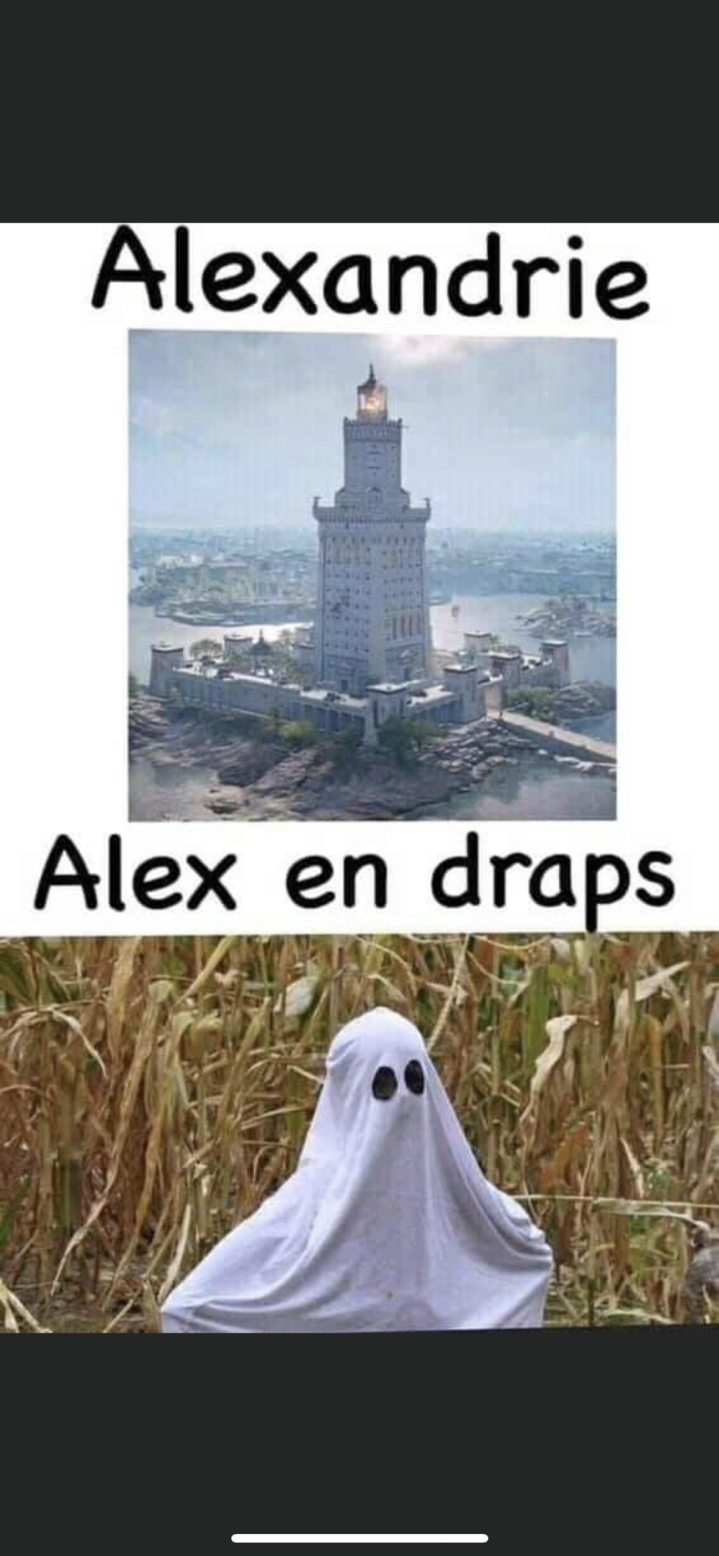 humour - Page 38 02a83c10