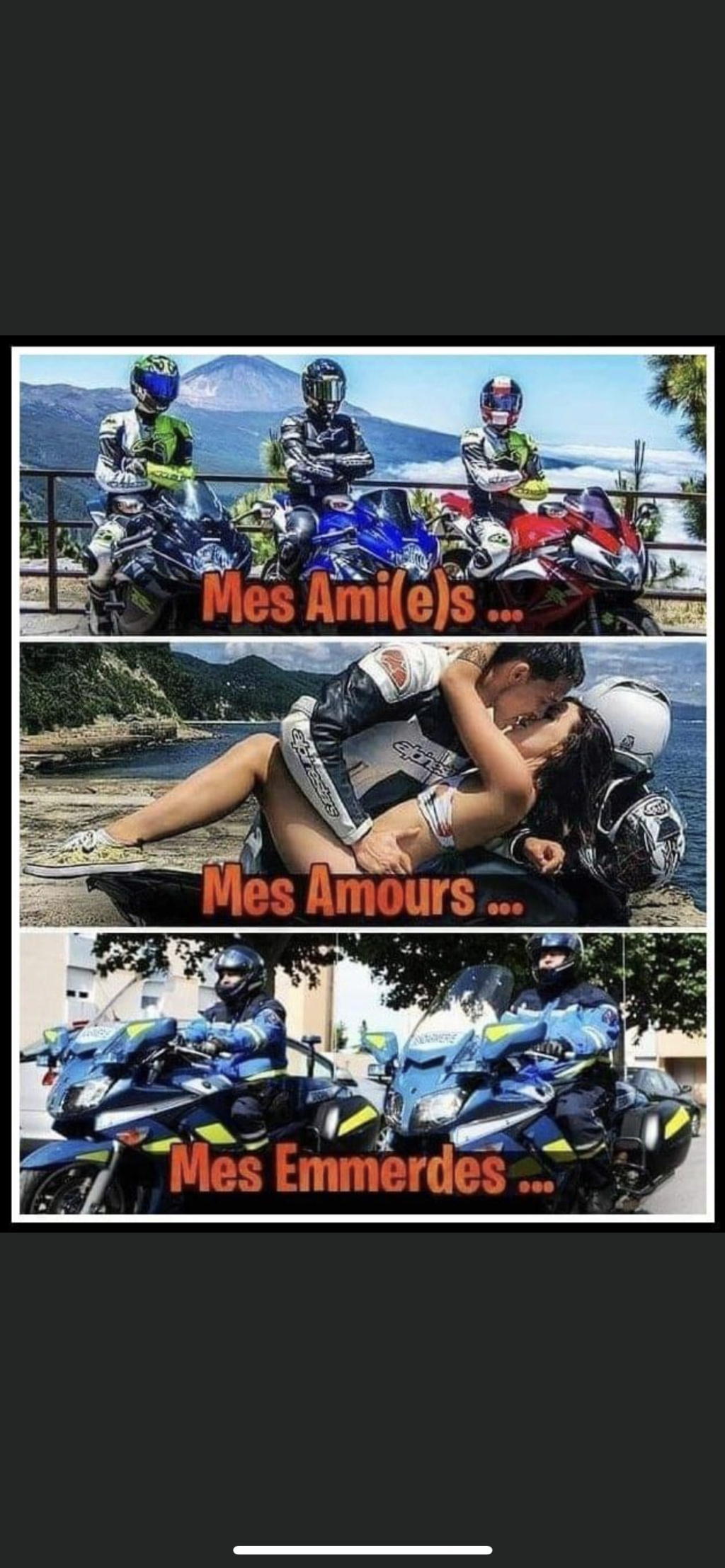 humour - Page 9 12b38a10