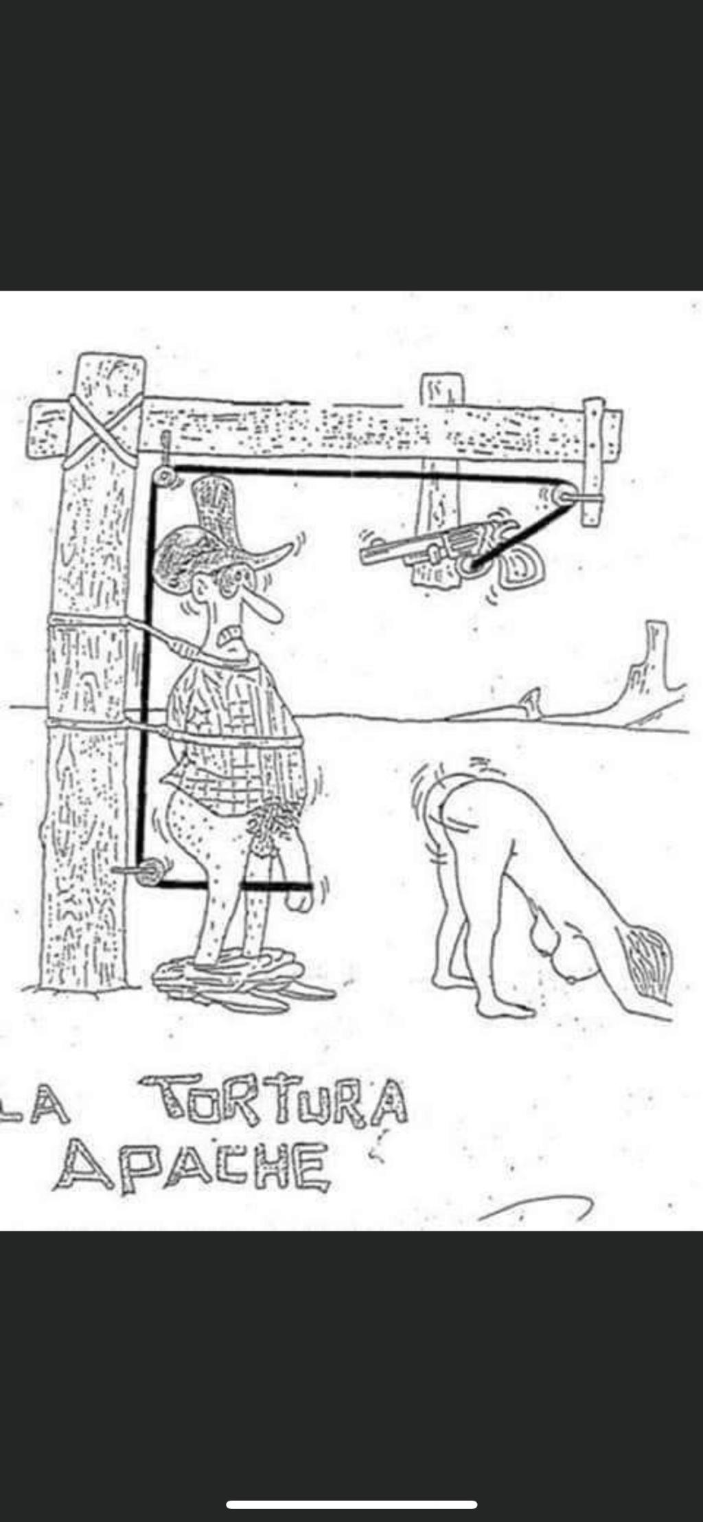 humour - Page 40 2e72e210