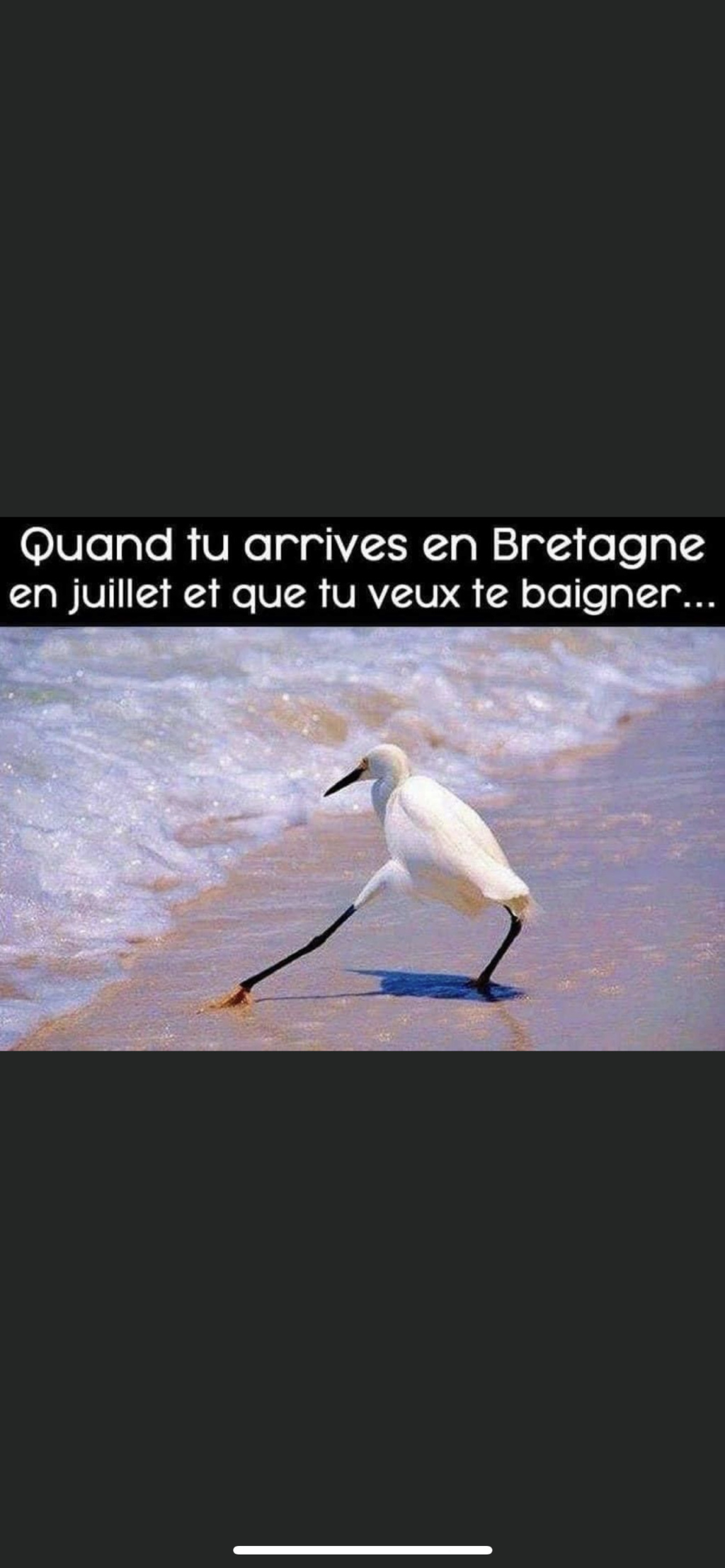 humour - Page 3 66789610