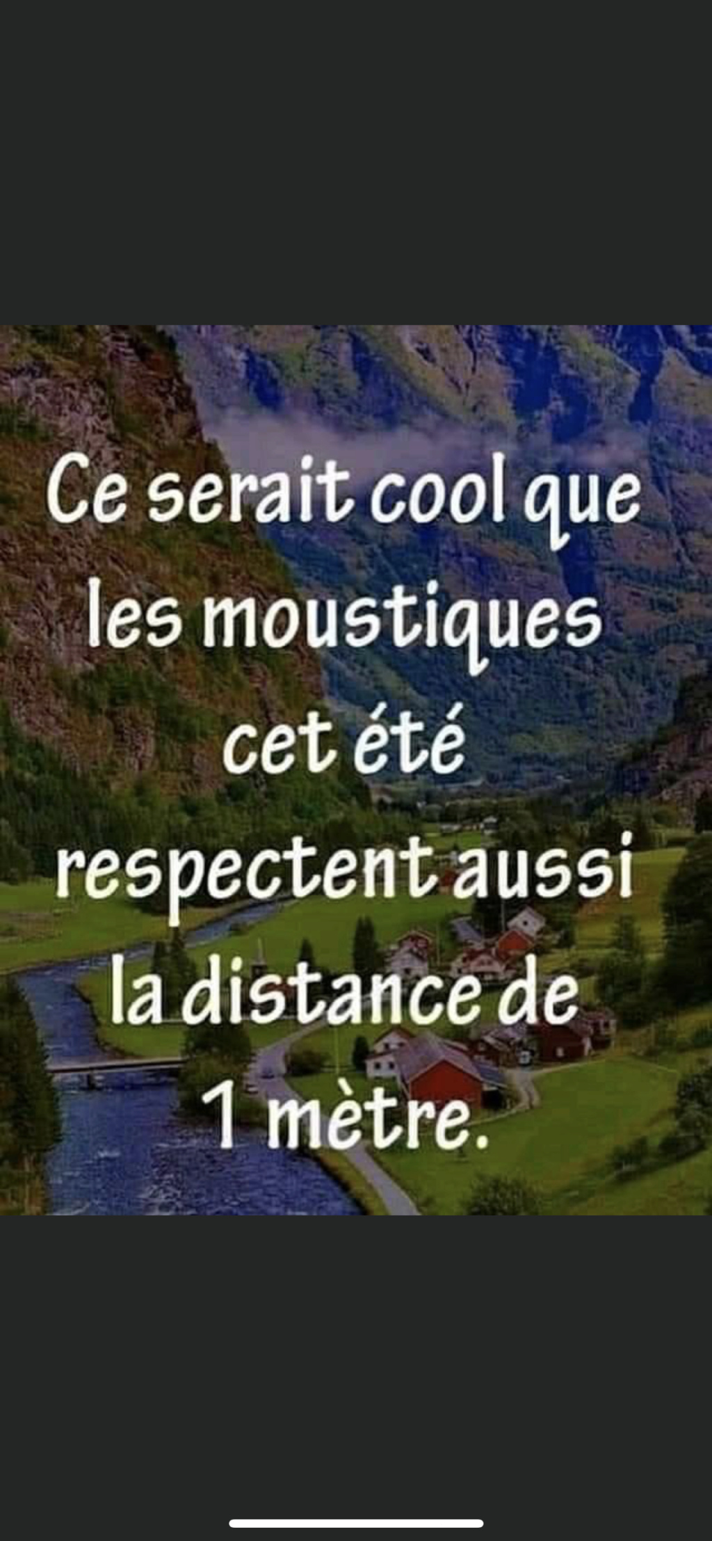 humour - Page 2 79f36510
