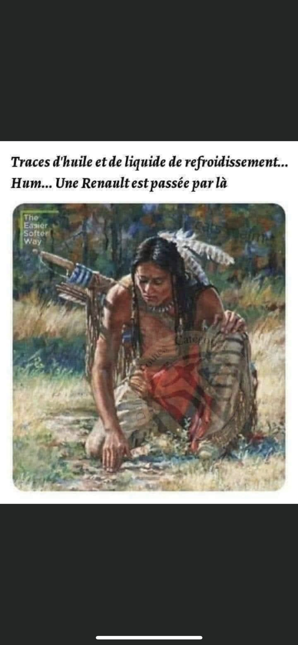 humour - Page 4 C3d2a210