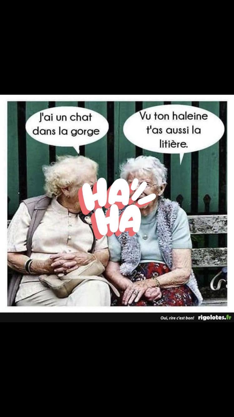 humour - Page 39 Img_4819