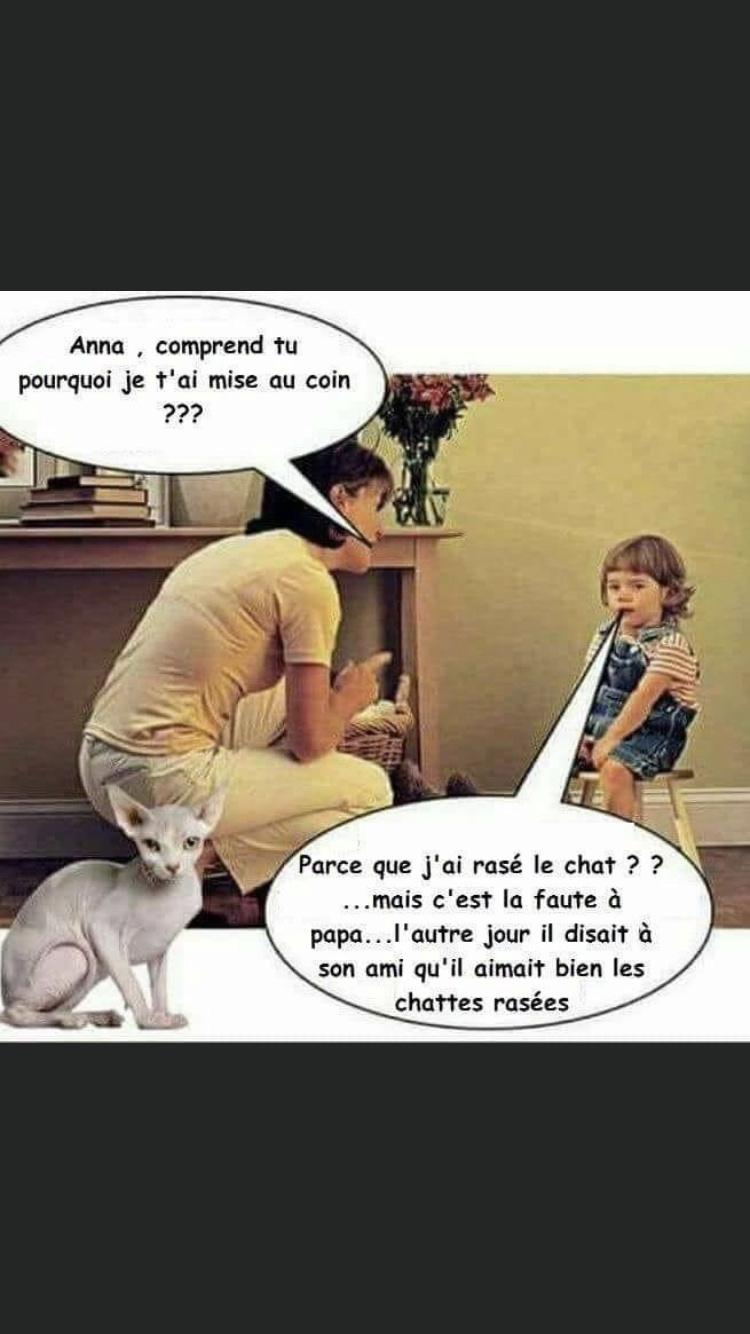humour - Page 39 Img_4917