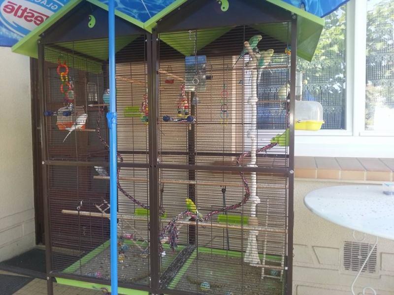Rassembler deux cages 12733410