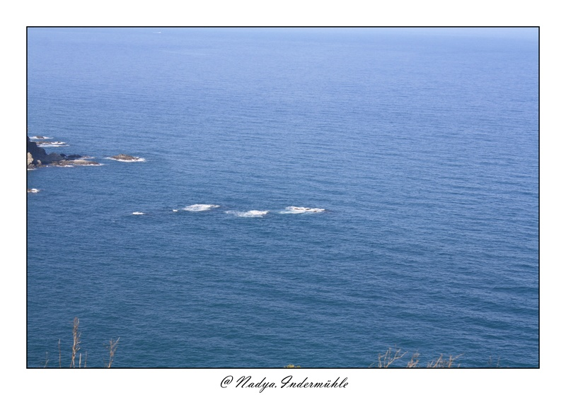 Banyuls-sur-mer Cadr2034