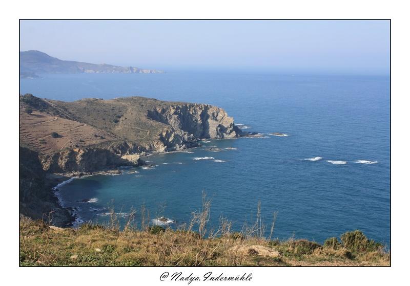 Banyuls-sur-mer Cadr2037