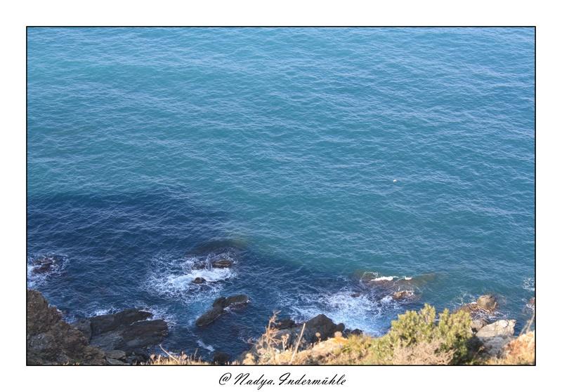 Banyuls-sur-mer Cadr2040