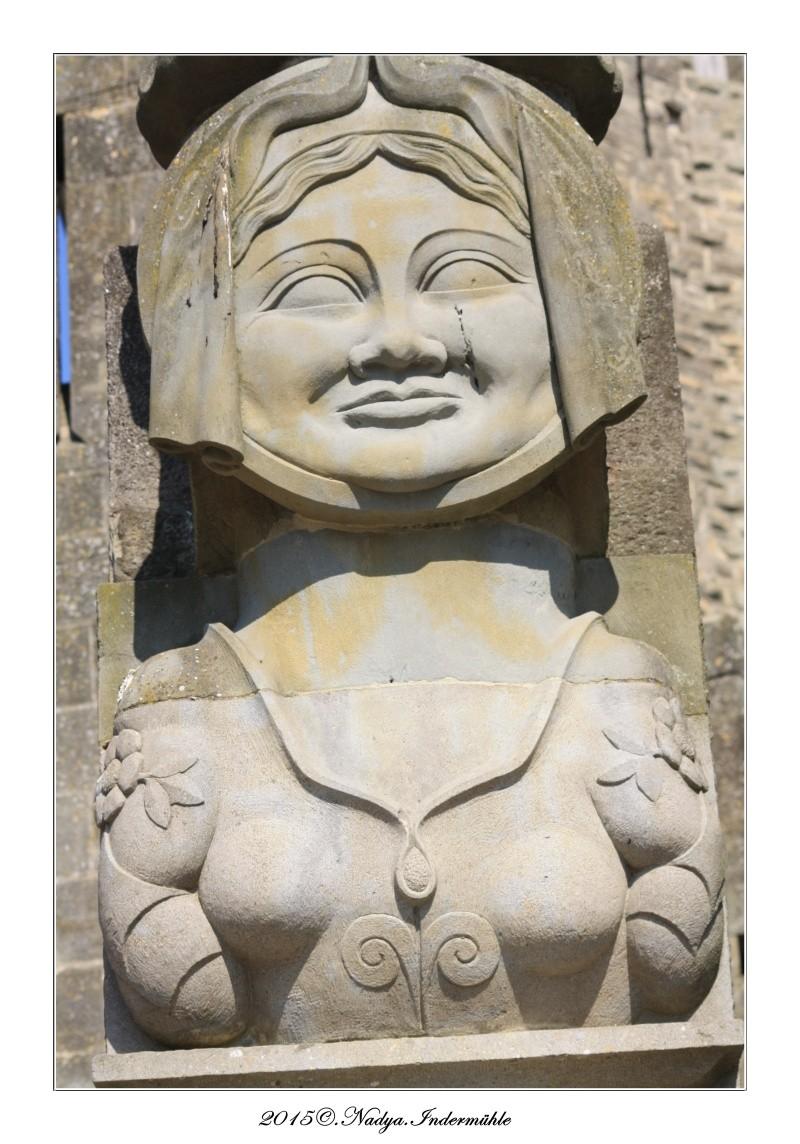 Carcassonne, et sa cité Cadrer49