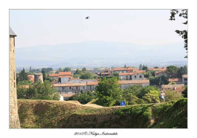 Carcassonne, et sa cité Cadrer50