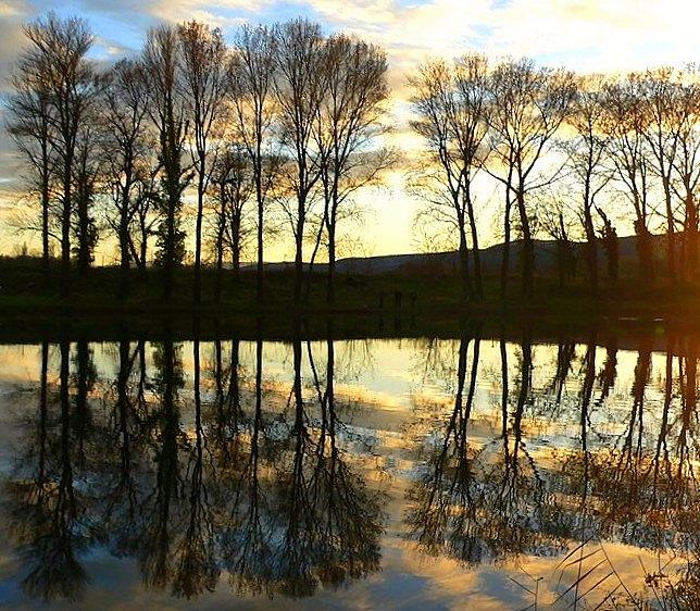 Reflets sur le lac  Lac_de11