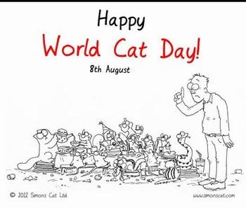 8 août - Journée Internationale du chat Journy11