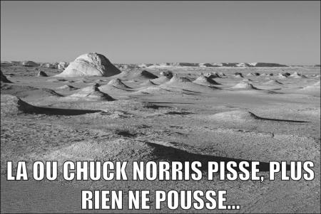 chuck norris - Page 2 Q50dd810