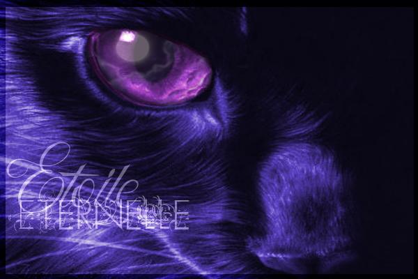 Le ch'tit atelier de Eternou ♥ CLOSE 1/1 Signa_13