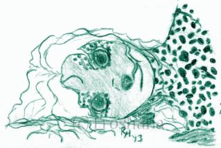 Froshana draws stuff Tumblr15