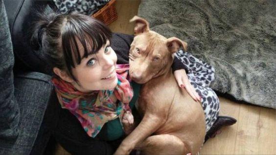 dangerous dogs/illegal breeds  2f848e10