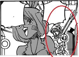 One Piece Kapitel 830: Er, auf den gesetzt wird Nami10