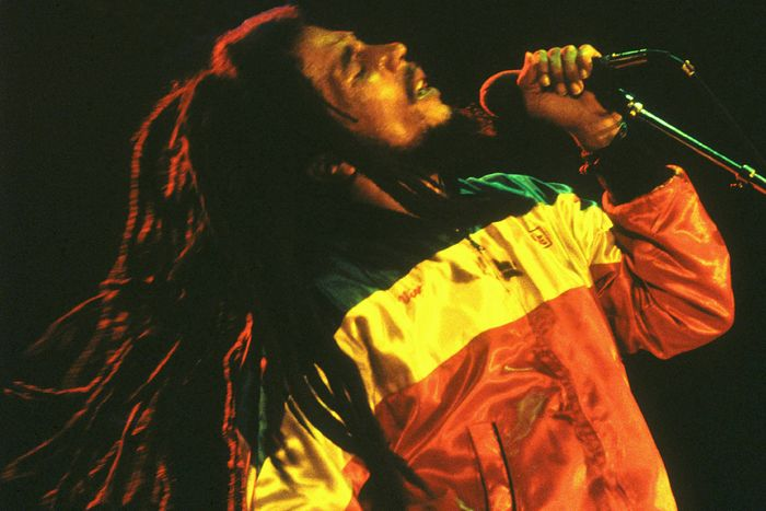 Bob Marley and The Wailers Journey Including Documentary Film Photo-10