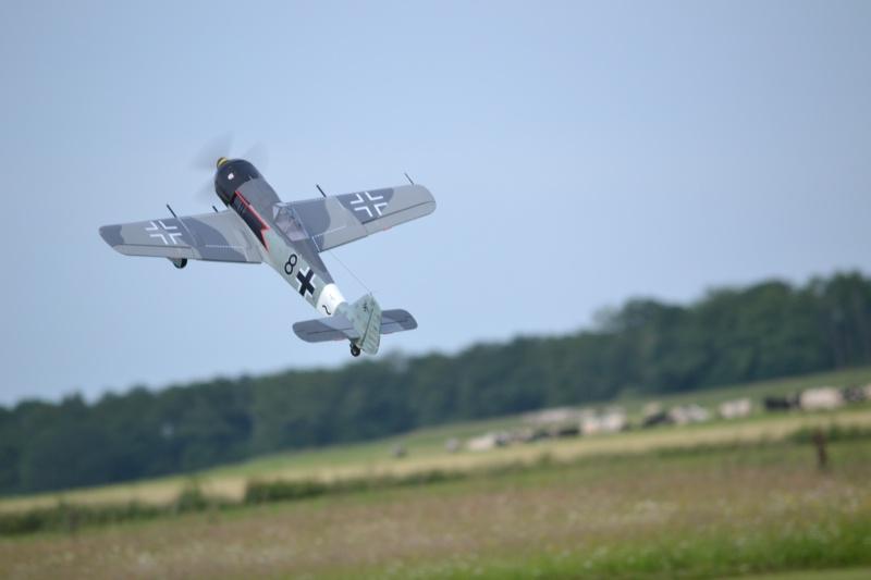 FW-190 FMS 1400mm, 2ème chance... Dsc_0213