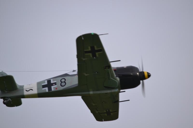 FW-190 FMS 1400mm, 2ème chance... Dsc_0215