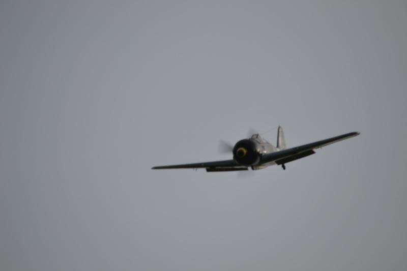 FW-190 FMS 1400mm, 2ème chance... Dsc_0216